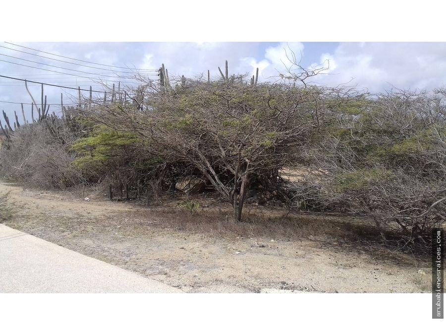 terreno propiedad en venta 6200 m2 santa cruz aruba