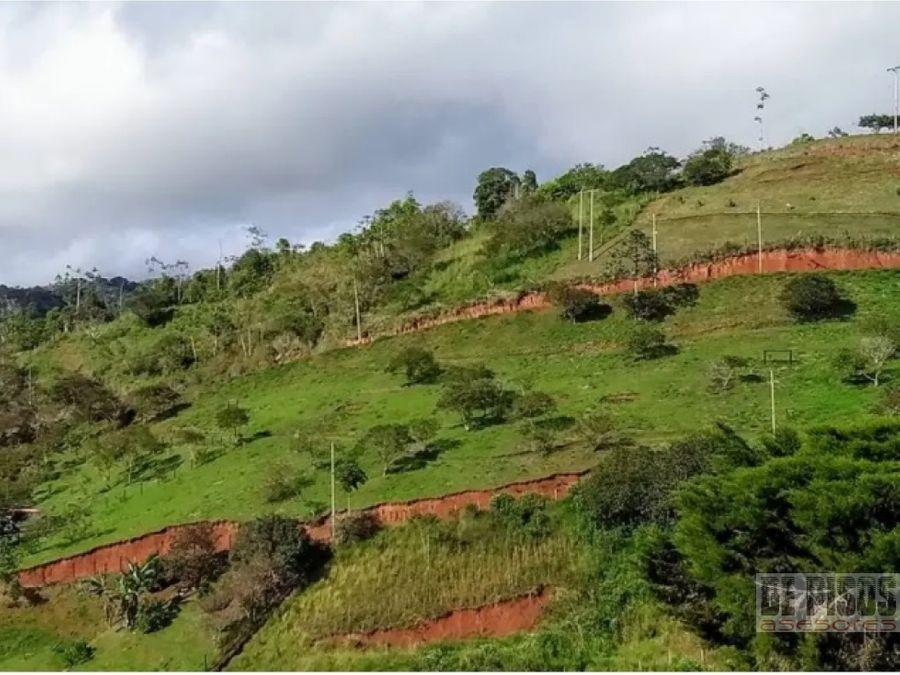 lote condominio bosques de calima via restrepo sector lago calima