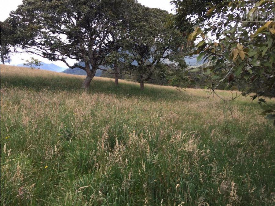 6170 plazas en el corregimiento de santa lucia tulua