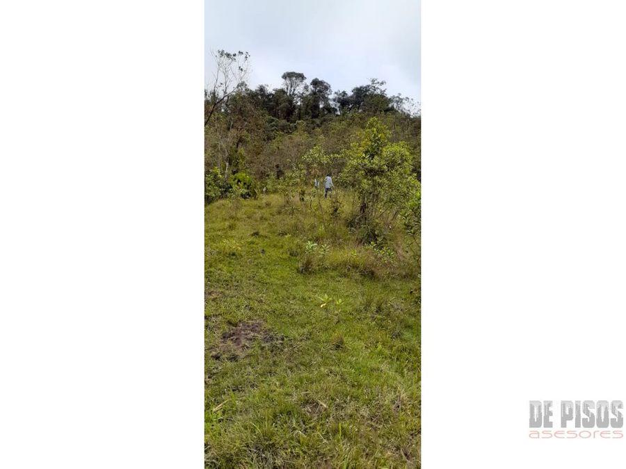 lote en el queremal 120 hectareas