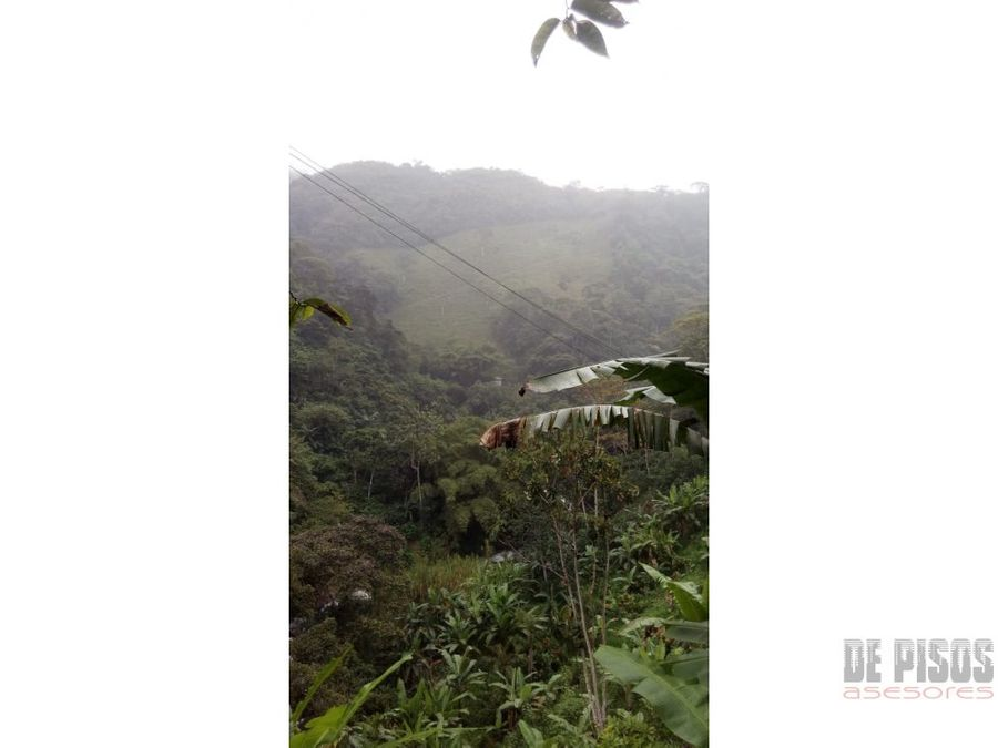 se vende terreno 120 hectareas en dagua