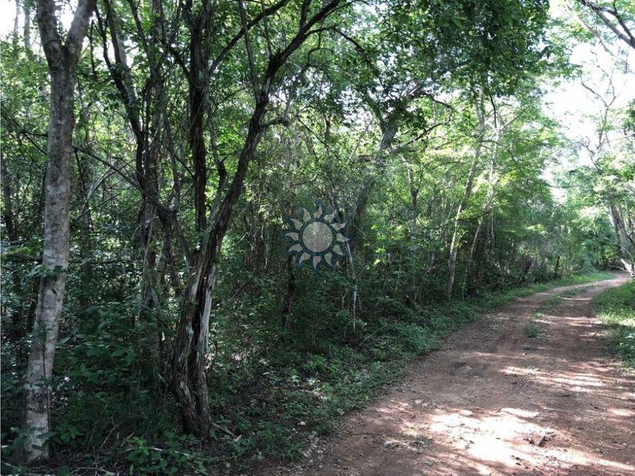 hectareas carretera libre valladolid cancun