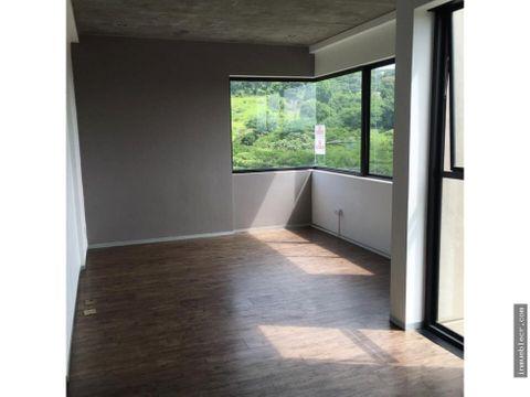 apartamento contemporaneo brasil de mora