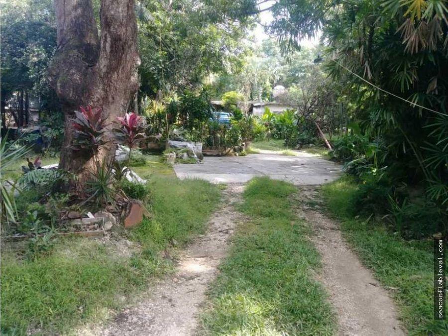 terreno en venta en tocuyito carretera vieja