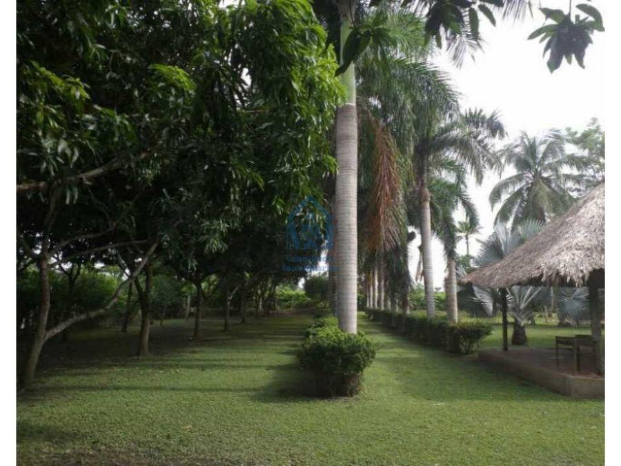 casa lote campestre en venta de 5000 m2 monteria