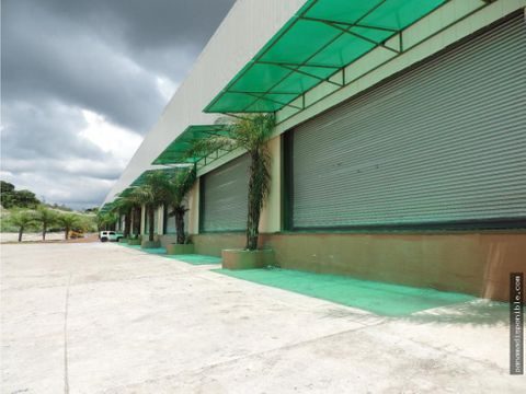 comercial en arrendar tocumen rah pa 19 11009