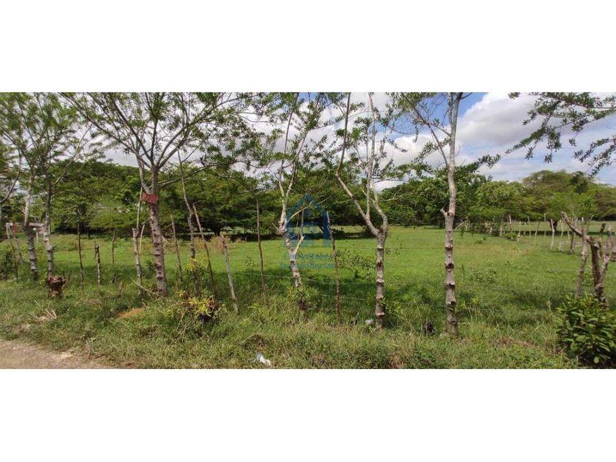 excelente terreno en venta 1530 m2 via los pericos monteria cordoba