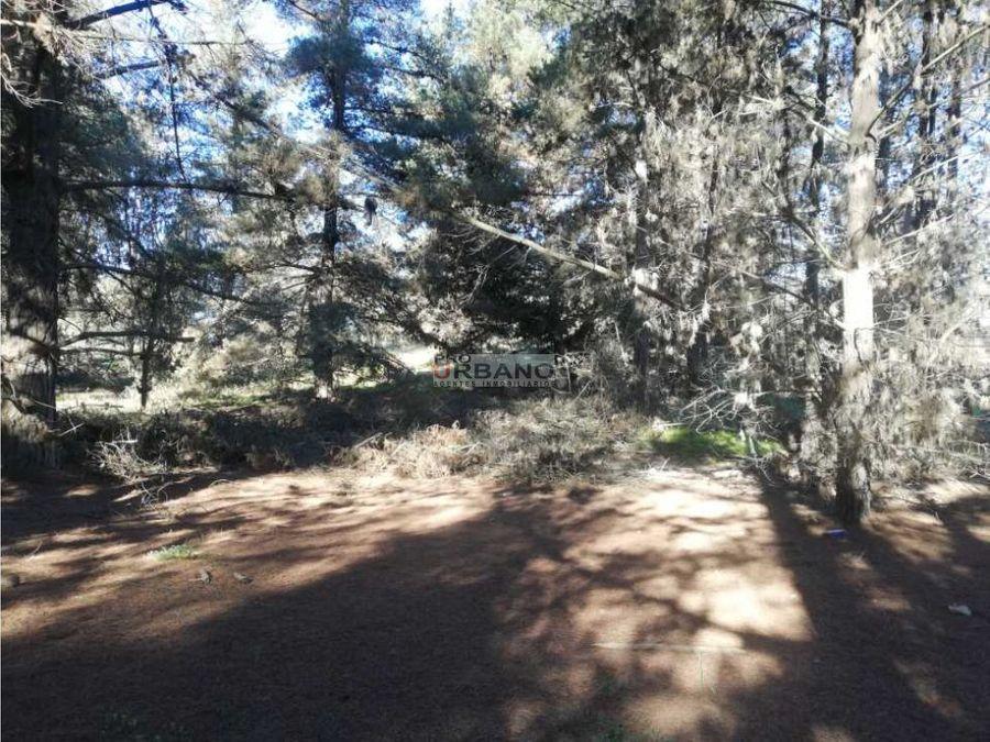 excelente oportunidad venta en blanco proyecto 6 lotes en los pinos