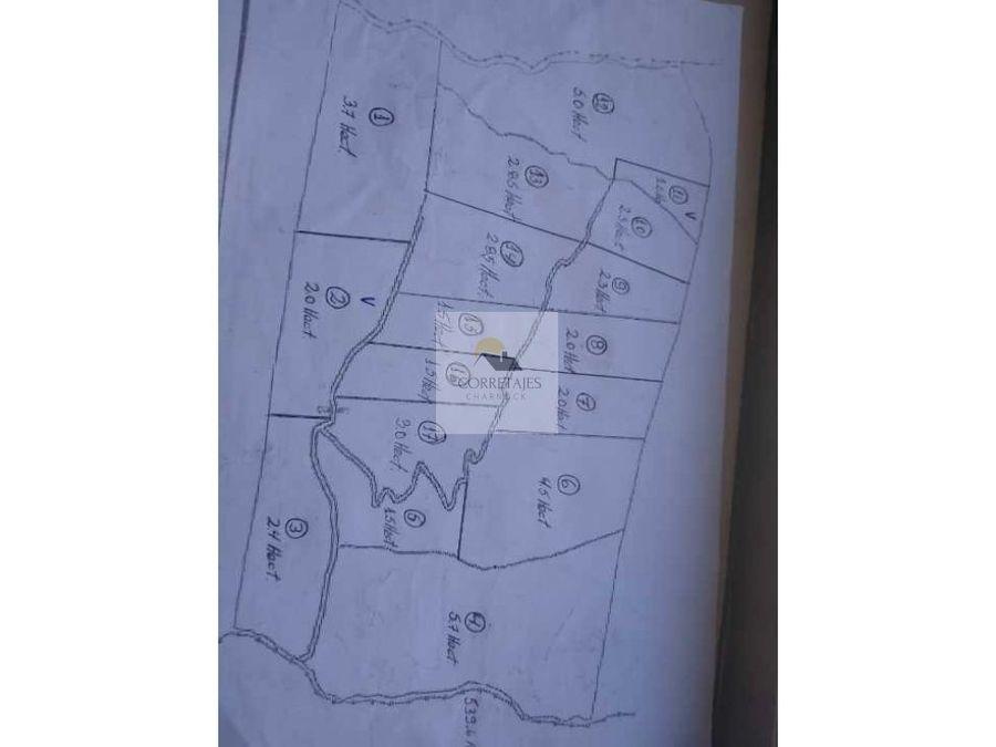 en venta parcelas de 5 hectareas carhuello
