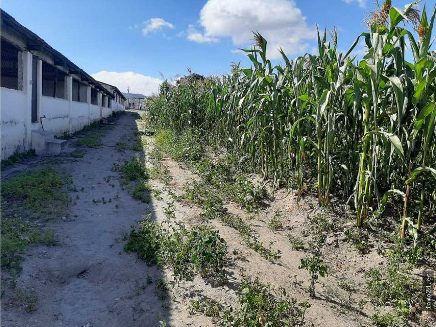 venta terreno con casa y galpones sector norte llano grande quito