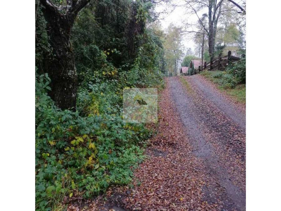 en venta una hectarea en sector metrenehue excelente ubicacion