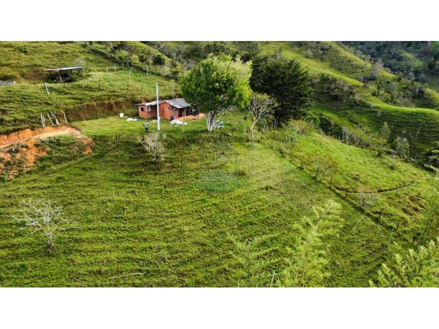 finca agricola productiva en concepcion ant a 10 km del casco urbano
