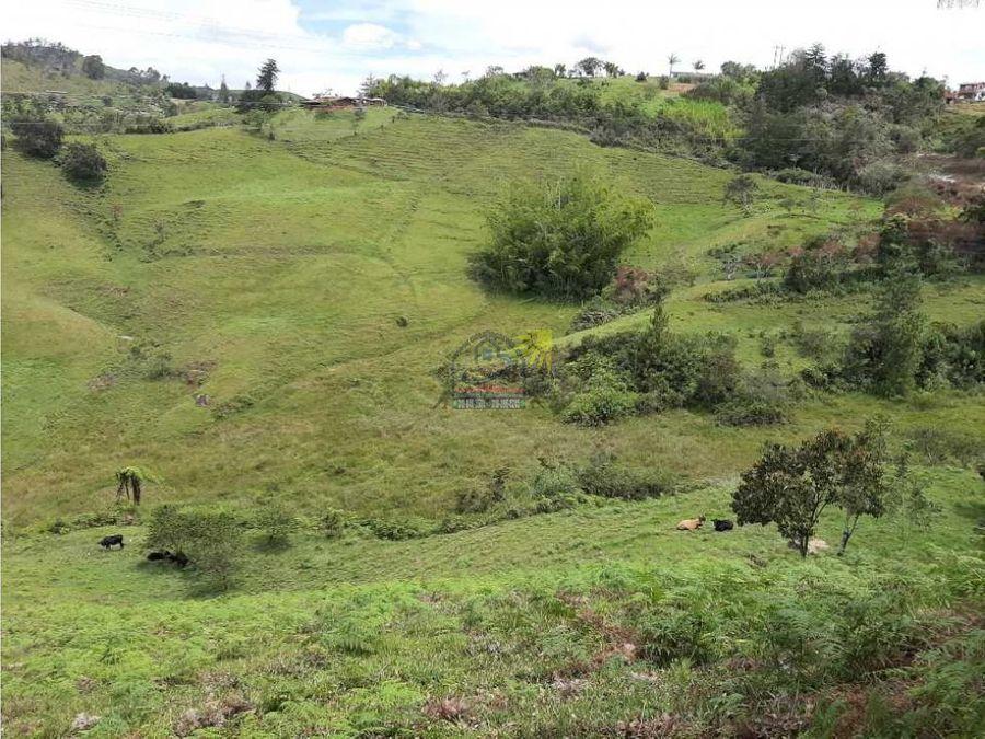 finca productiva agricola de 12 hectareas en marinilla vereda pozo