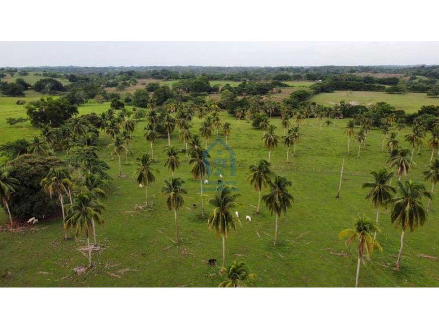finca de 777 hectareas para cria de ganado en cordoba colombia