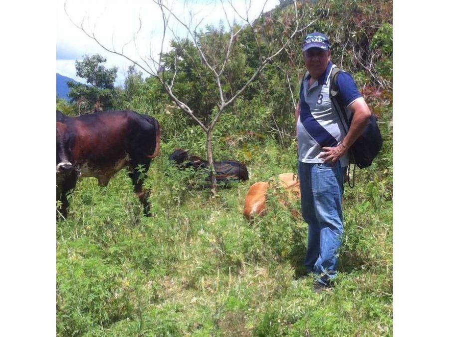finca en betulia 130 hectareas para aguacatera