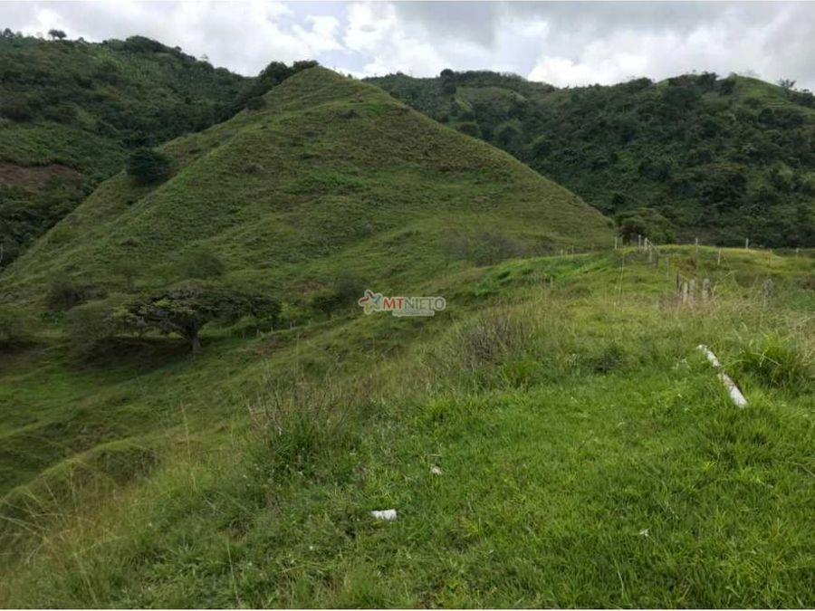 finca ganadera de 64 cuadras en quebrada nueva valle del cauca