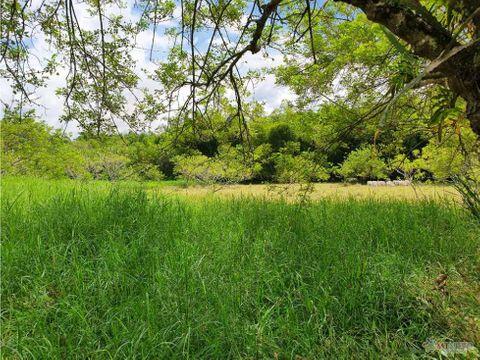 finca ganadera 35 cuadras rio verde calarca quindio