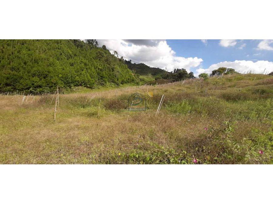 finca productiva agricola en marinilla semi plana vereda chochomayo