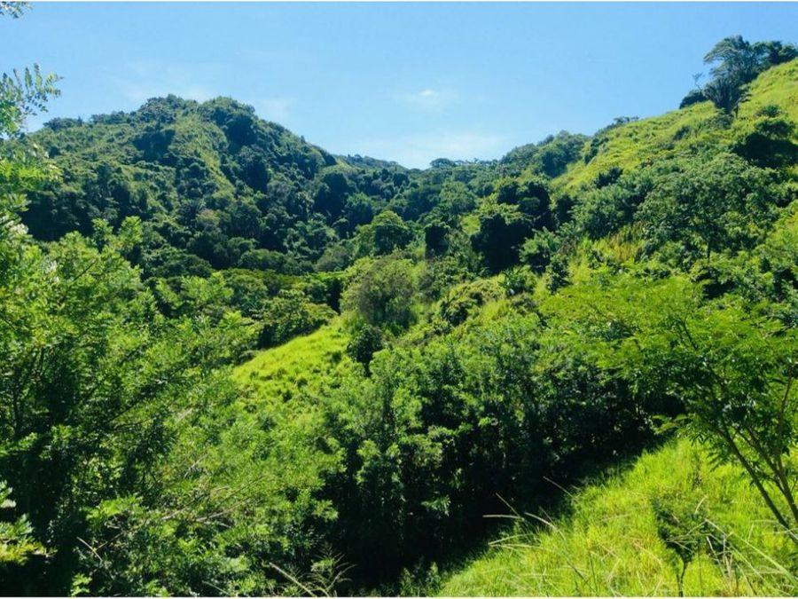 finca 114 ha cerca al parque tayrona calabazo santa marta colombia