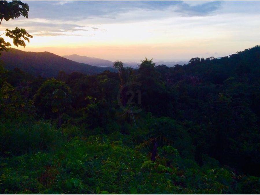 finca 5 ha con vista a la ciudad tigrera santa marta colombia