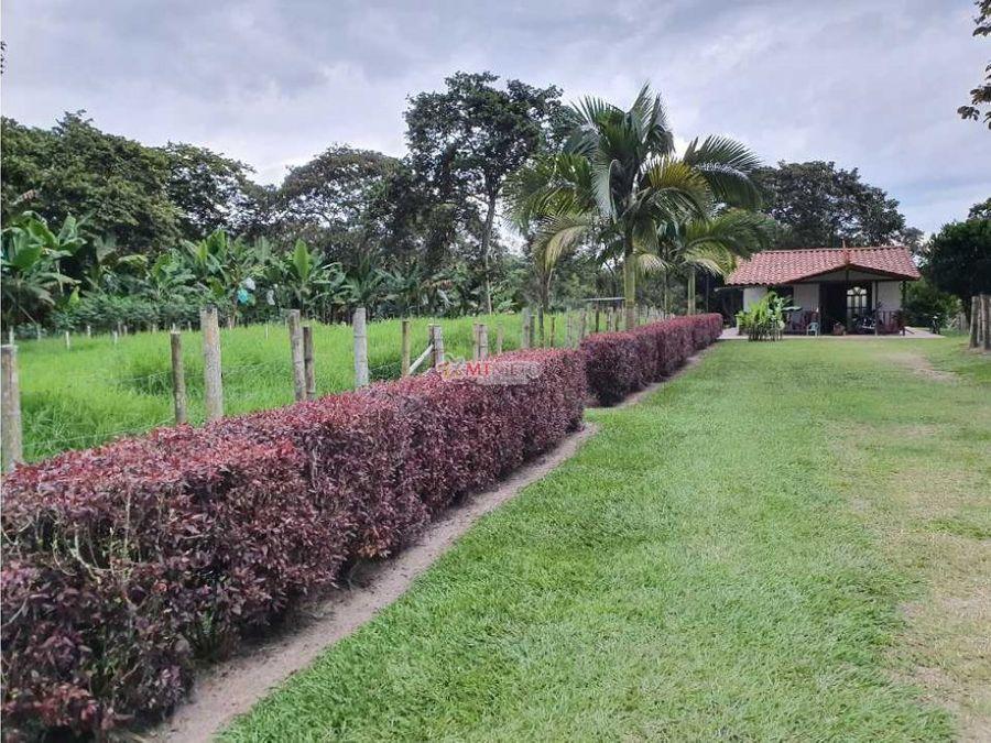 finca 6 cuadras sembrada con platano y pasto via pueblo tapado