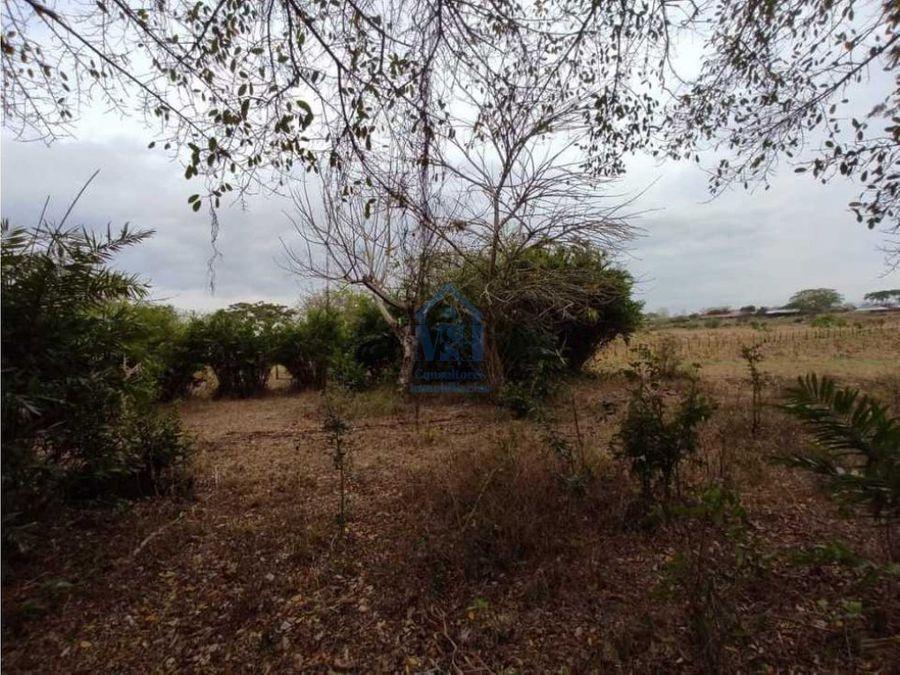 gangazo parcela de una hectarea via arboletes monteria cordoba