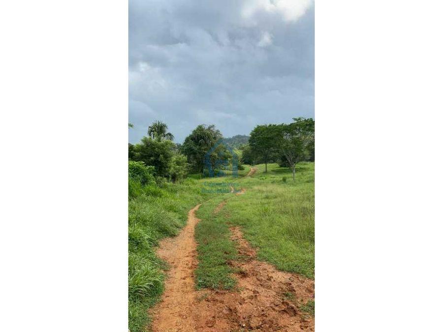 gran finca de 100 hectareas a 4 kilometros de la carretera en cordoba