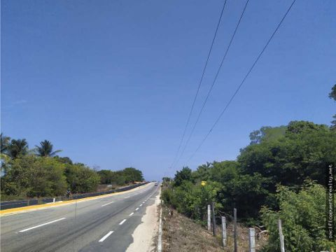 hectareas sobre carretera rumbo a puerto