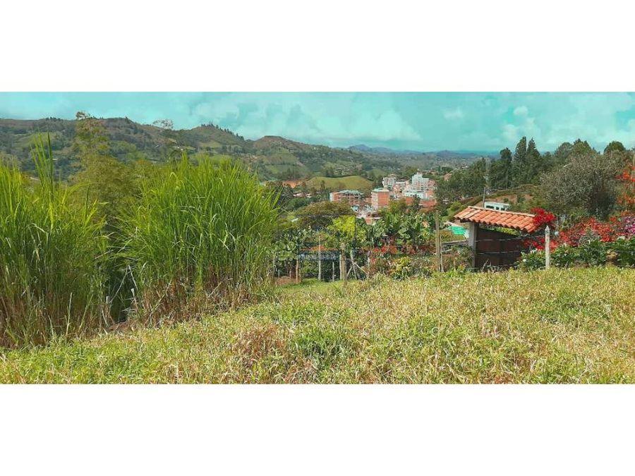 hermoso lote campestre semi urbano en el penol ant con exelente vista