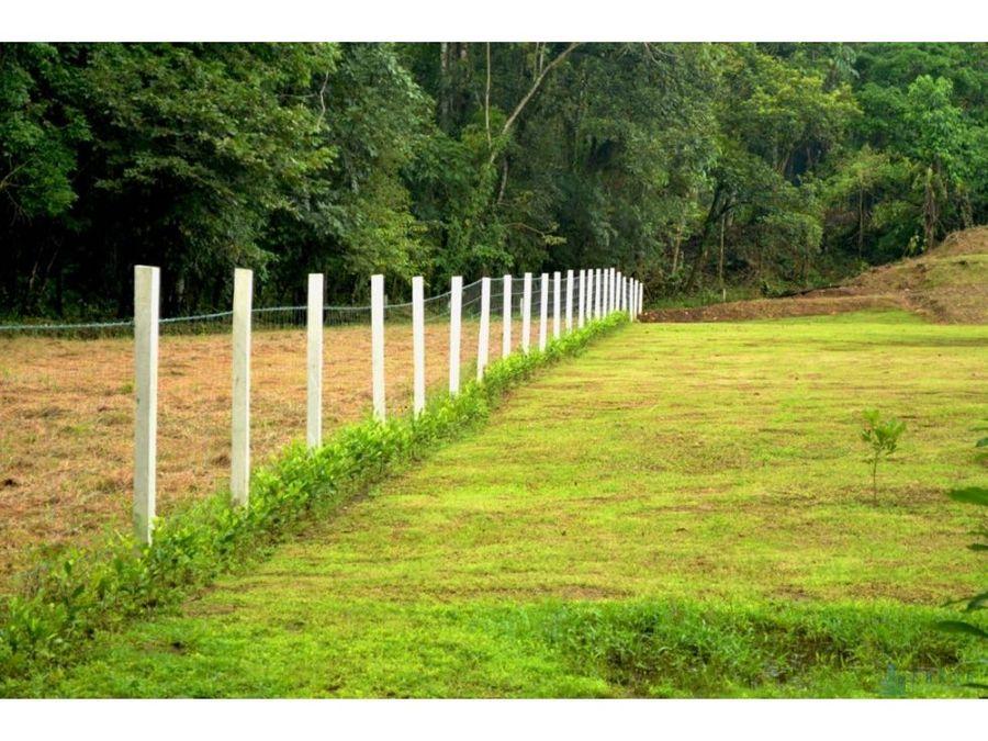 lote en quintas de corinto guapiles