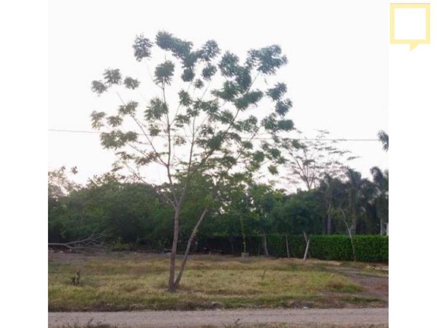 lote en venta palma verde
