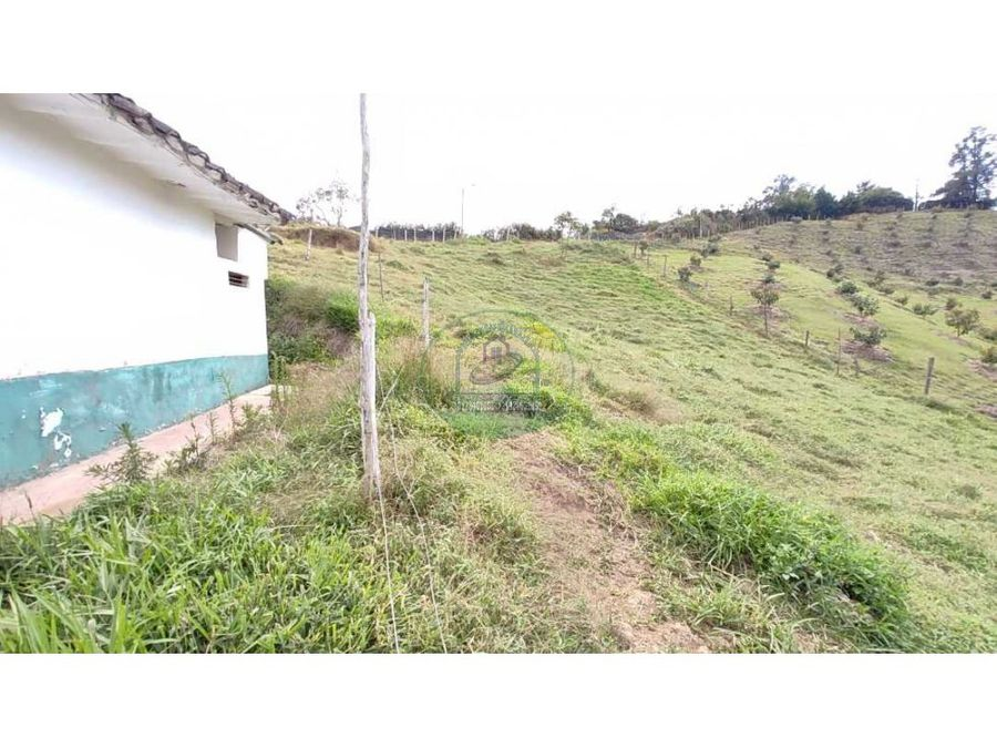 lote rural de 13800m2 en rionegro con excelente acceso vehicular