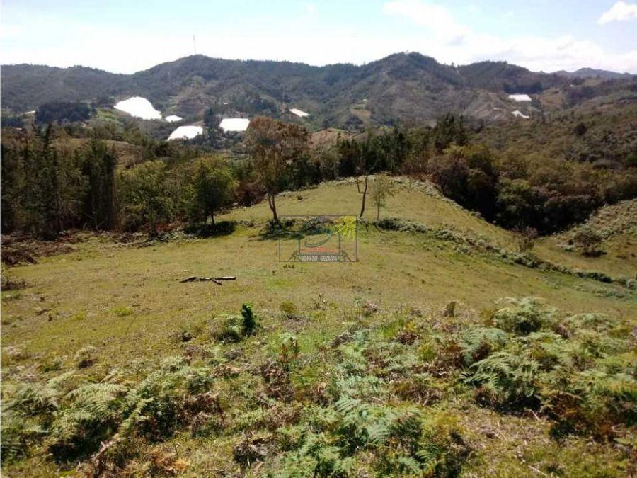 lotes campestres para los amantes de la naturaleza y el campo libre