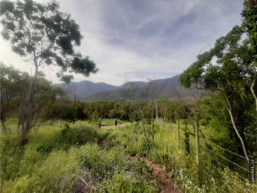 parcelas paisaje escenario de naturaleza olmue