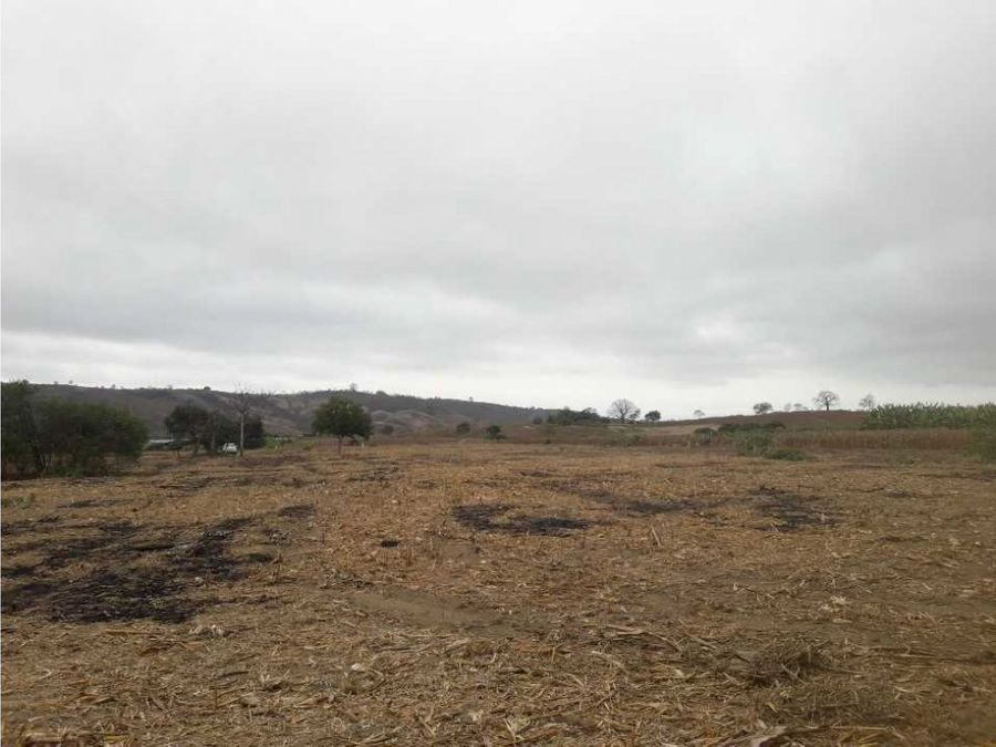 porpiedad de 5 hectareas a la venta en rocafuerte