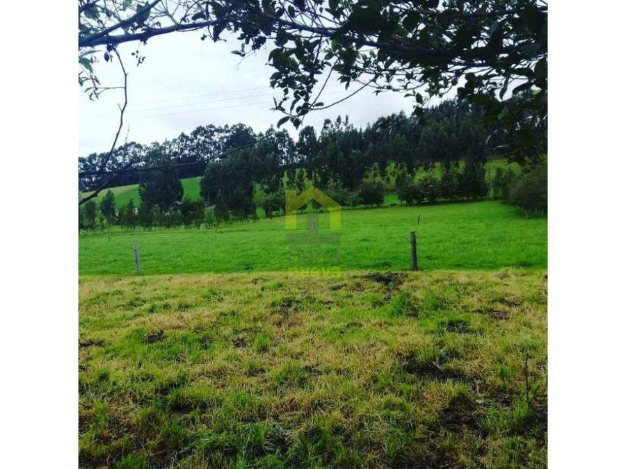 propiedad en cayambe 12 hectareas
