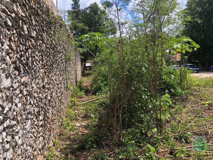 proyecto de food truck valladolid yucatan