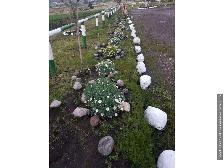 quinta de 1 hectarea en olmedo cayambe