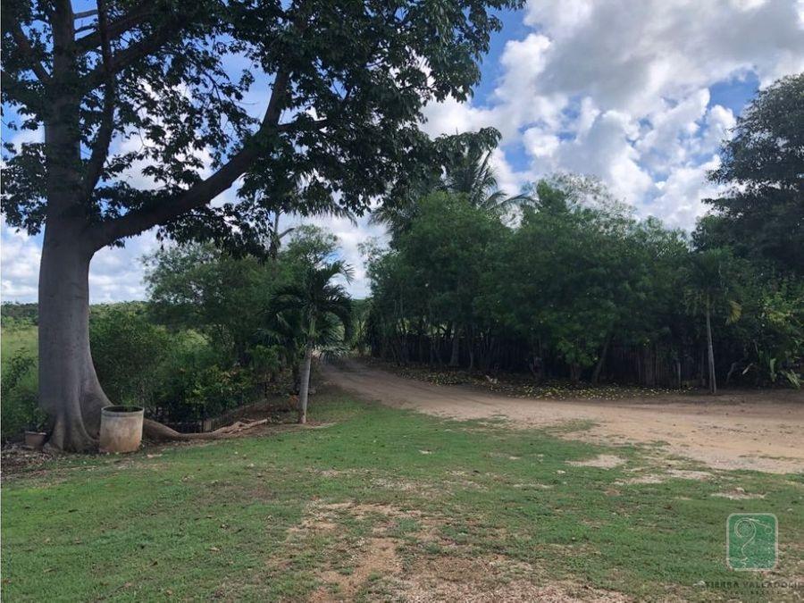 rancho con cenote 5 minutos de valladolid