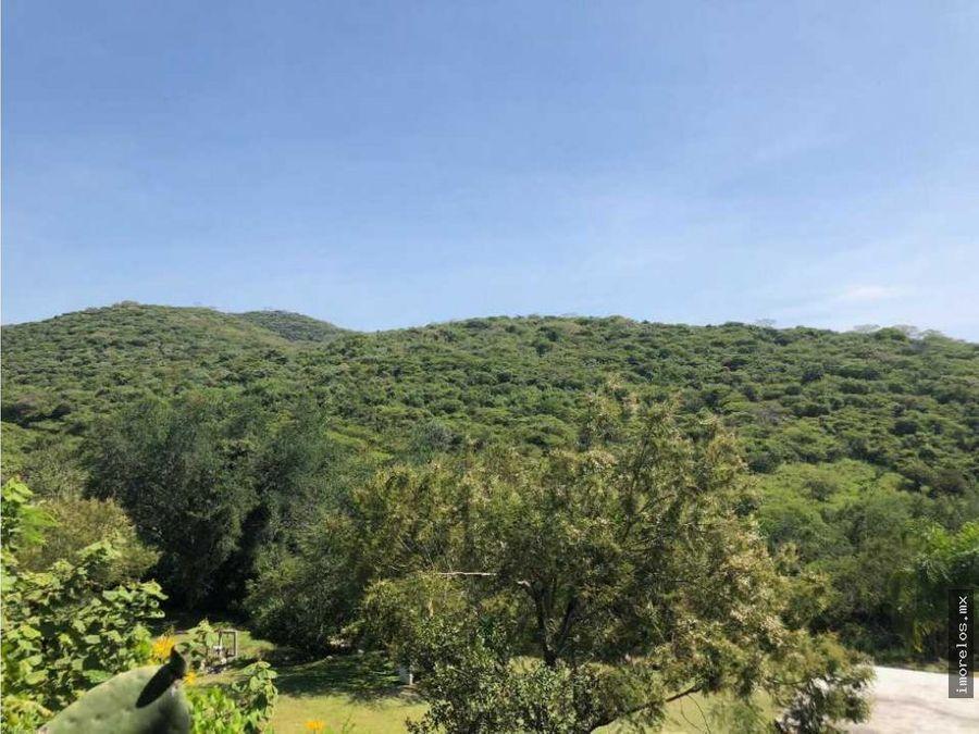 rancho en venta en alpuyeca mor