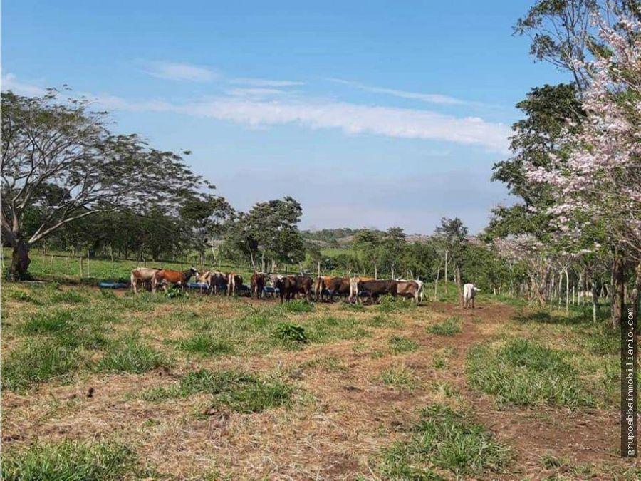 rancho en venta en juarez chiapas