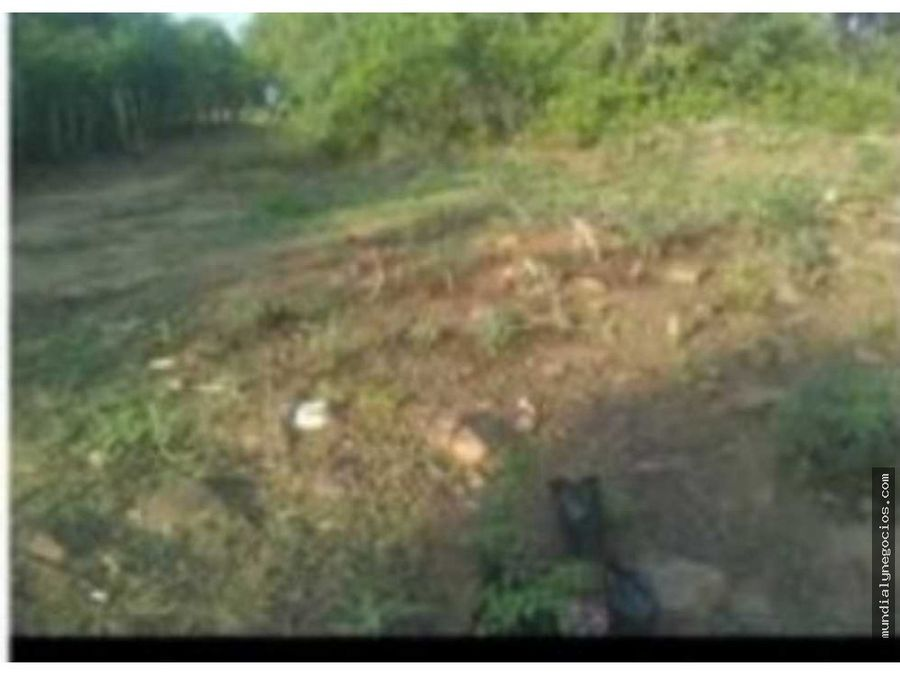 remate de 6 hectareas sobre la carretera 02