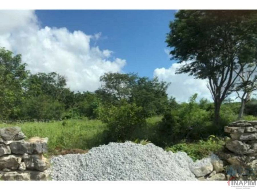 renta terreno en dzitya yucatan