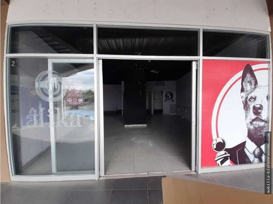 rento local pb plaza terranova corregidora qro