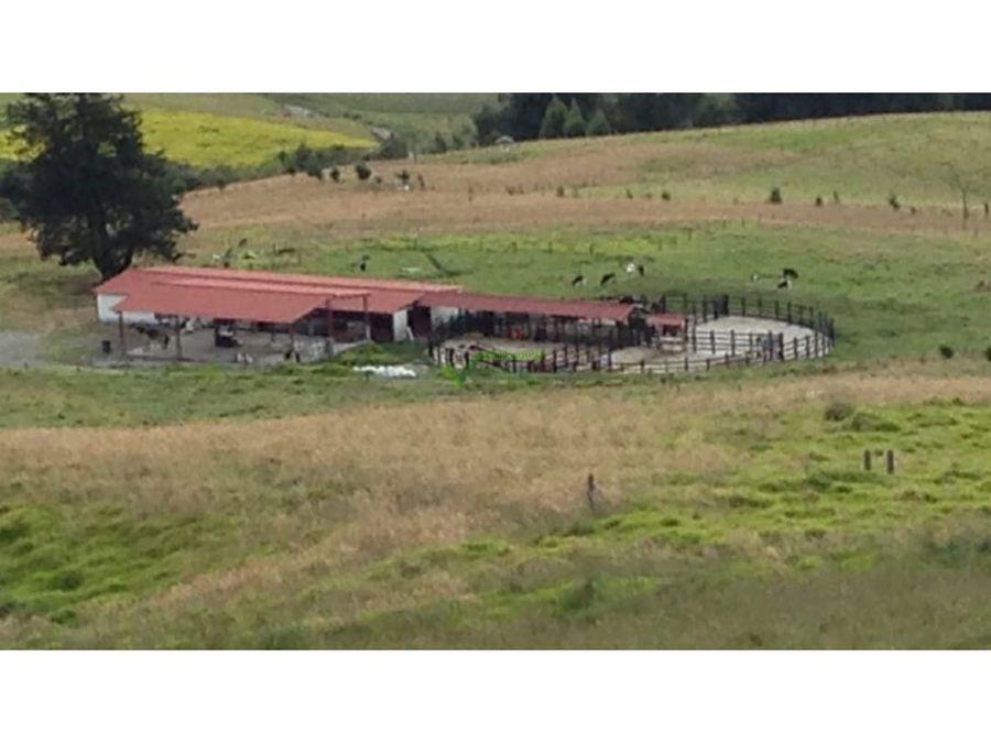 se vende finca agricola ganadera valle del cauca barragan