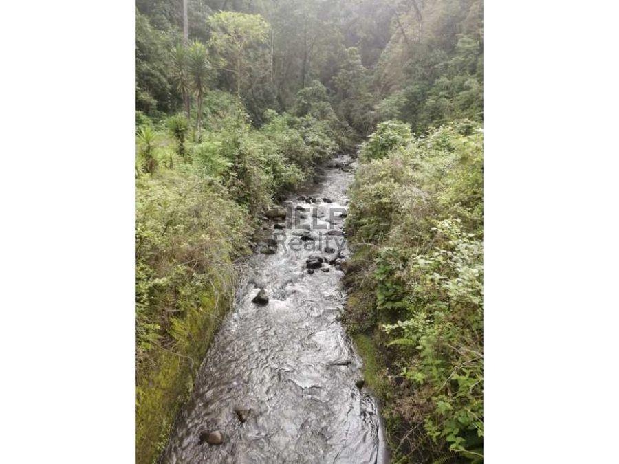 se vende finca en san ramon de tres rios pizote