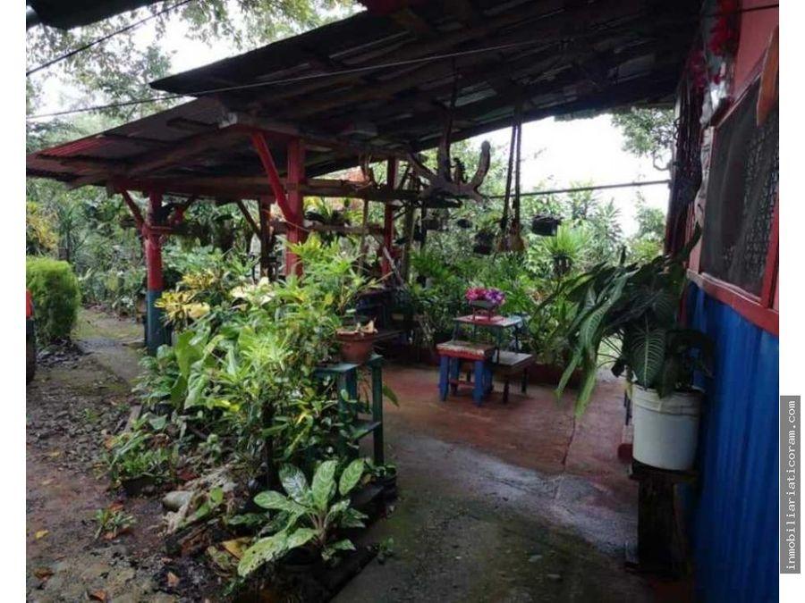 se vende preciosa quinta con casa d madera en quebrada azul san carlos