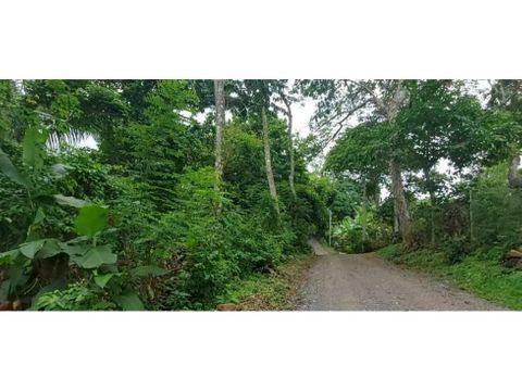sea confiable vende 15 hectareas 415937 mts arraijan centro