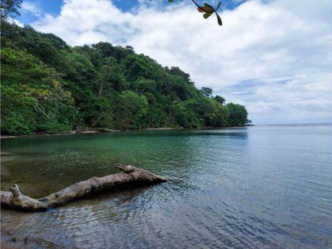 sea confiable vende 1 hectarea 36829 mts2 portobelo isla leon