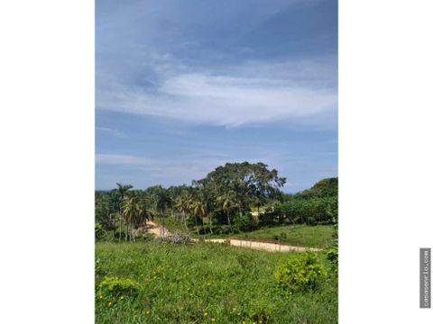 solar de 228313mts2 en venta en rio san juan
